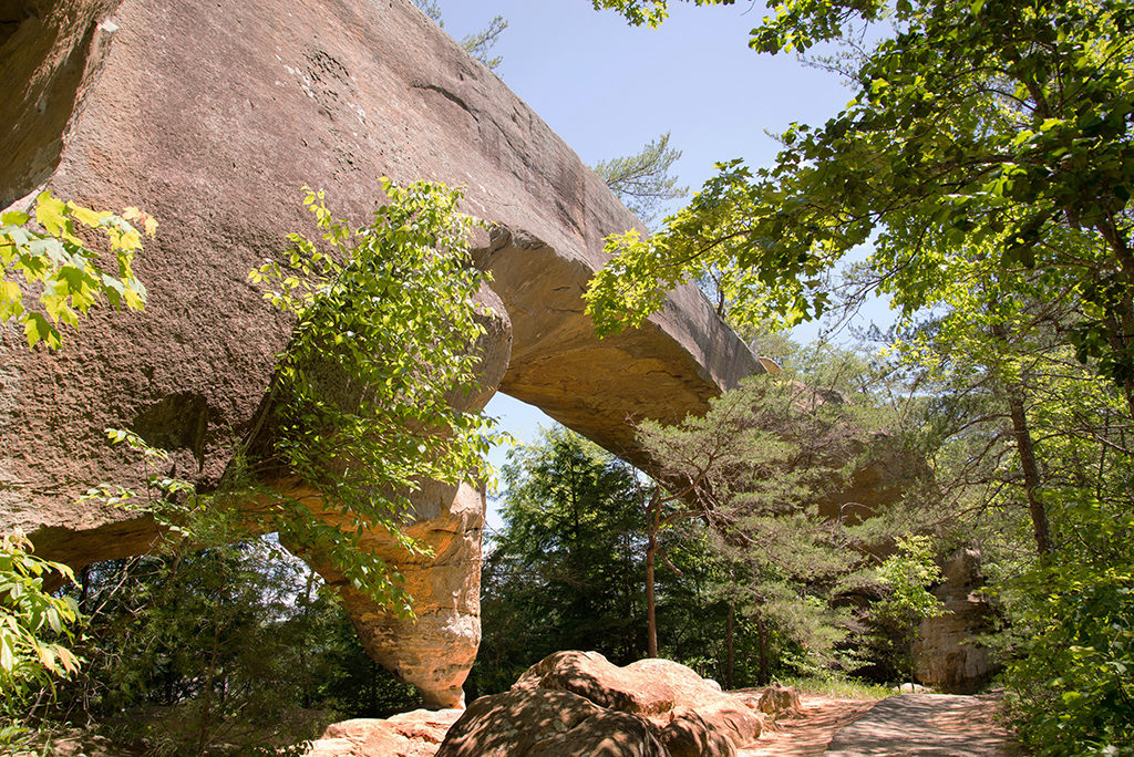 Arches at the Red River Gorge