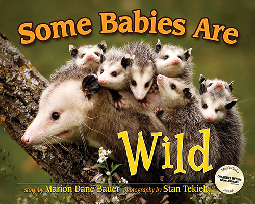 Some Babies Are Wild cover
