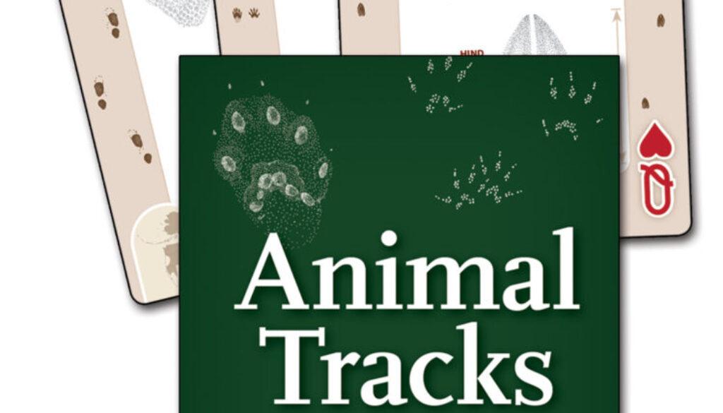 animal_tracks_northwest_playing_cards_9781591936923_FC.jpg