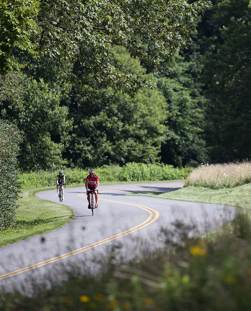 Two bicyclists riding along a winding road