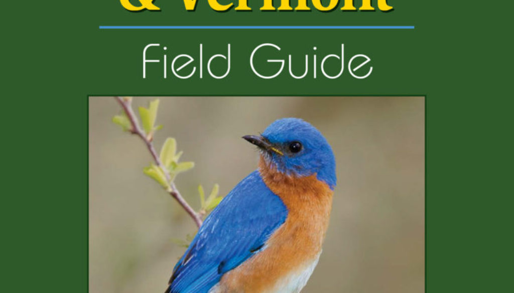birds_of_new_hampshire_and_vermont_9781591936404_FC.jpg