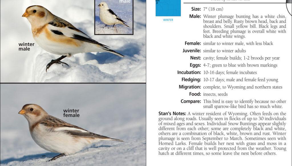 birds_of_wyoming_9781591937258_001_iart.jpg