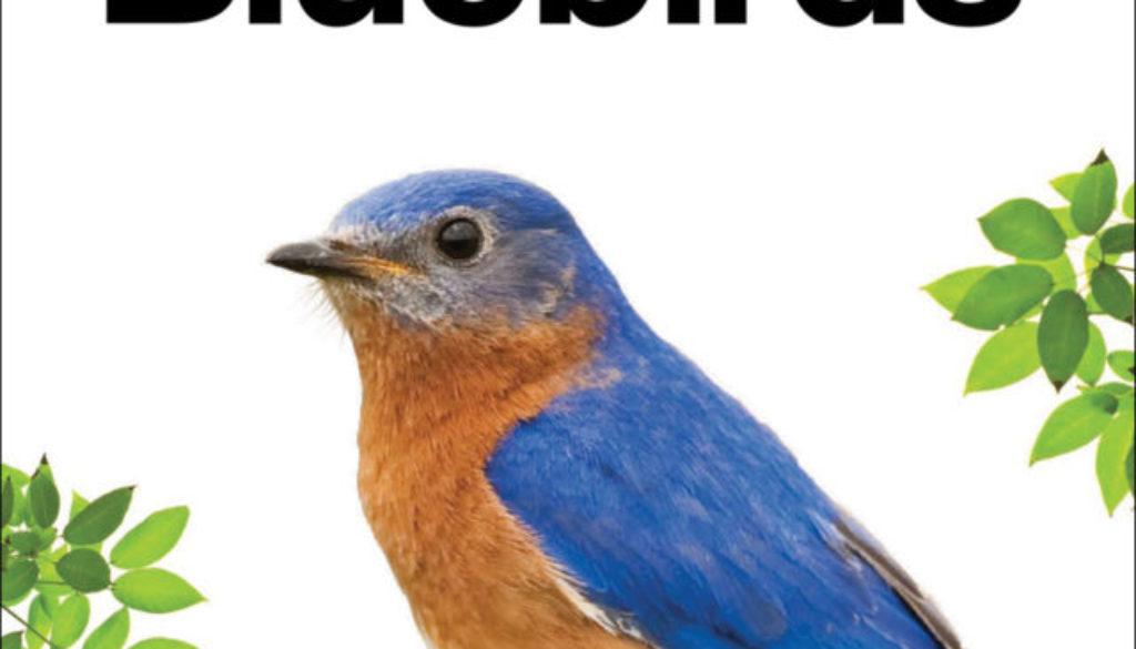 bluebirds_9781591936879_FC.jpg