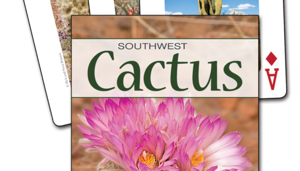 cactus_of_the_southwest_cards_9781591936510_FC.jpg