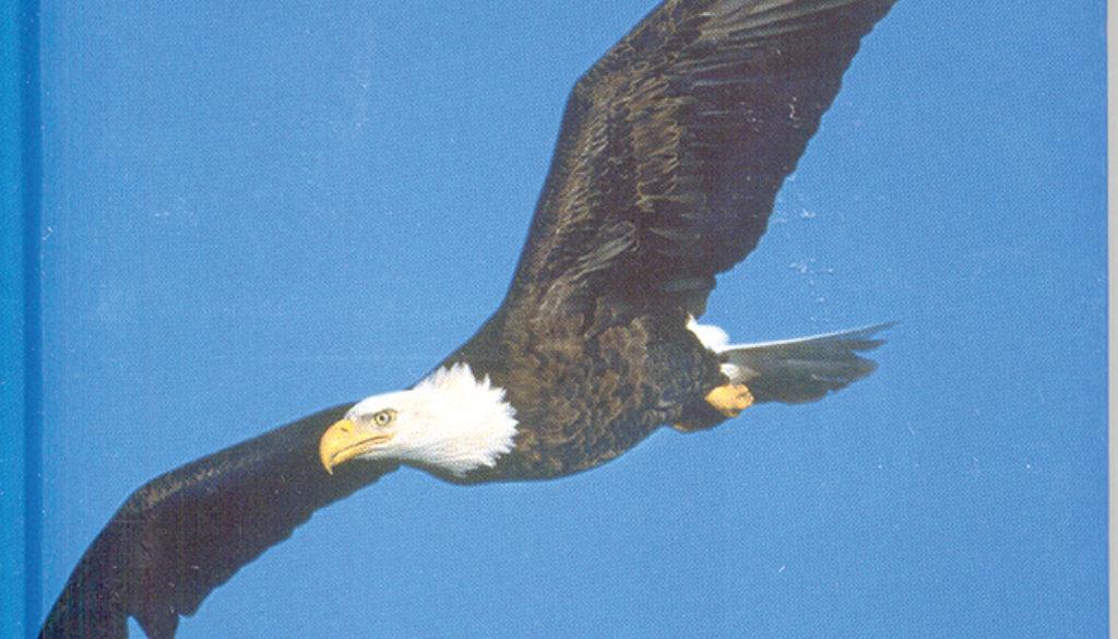 eagle_blank_journal_unlined_9781932472134_FC.jpg