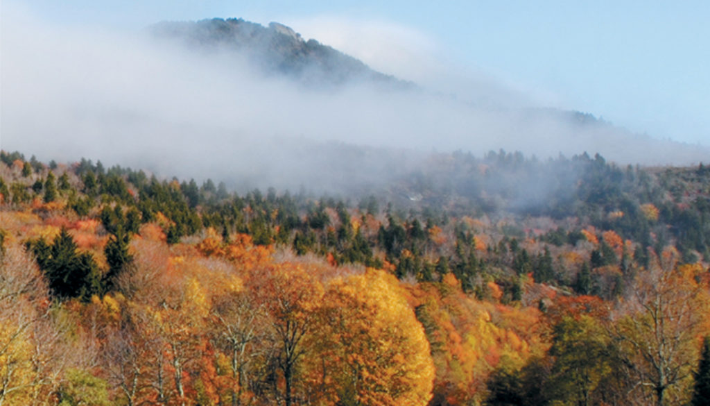 guide_to_the_blue_ridge_parkway_3e_9780897329088_FC.jpg