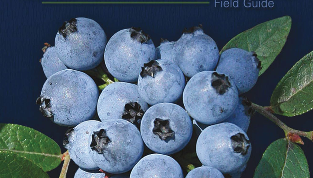 wild_berries_and_fruits_of_mn_wi_mi_2e_9781591937968_FC.jpg