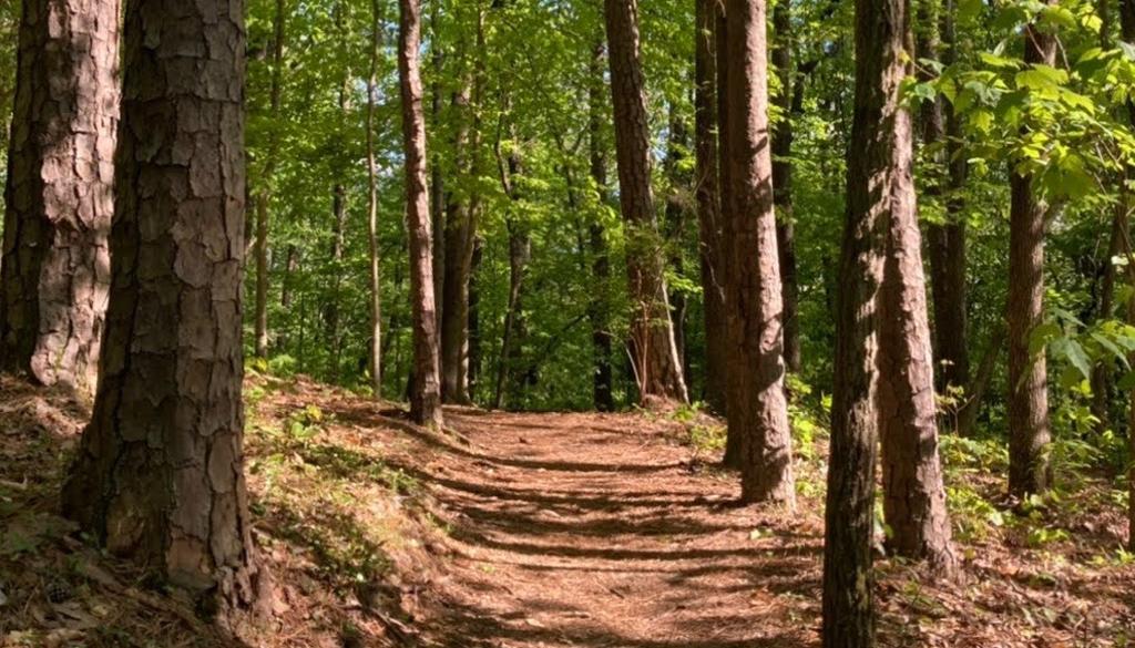 Birmingham Trail